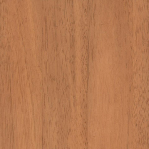 BEECH - Plain Sawn & European Steamed