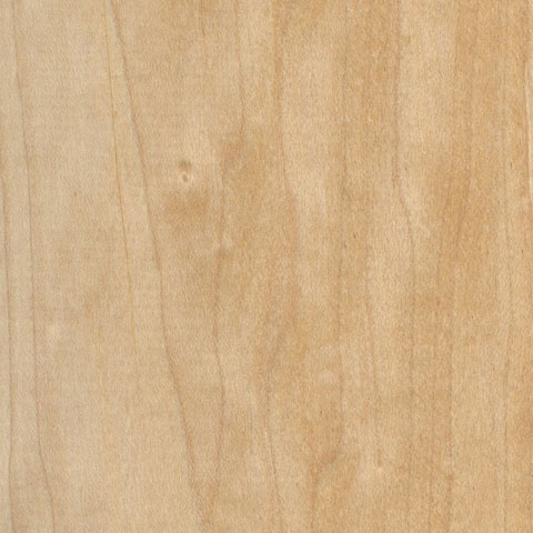 MAPLE - Plain Sawn & Rotary Cut